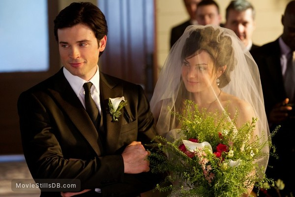 tom welling wedding pictures - 800×600