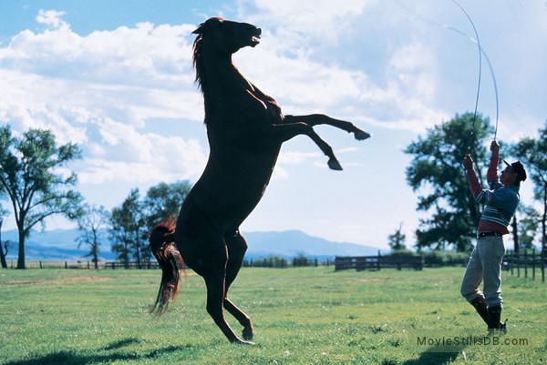 The Horse Whisperer - Publicity still