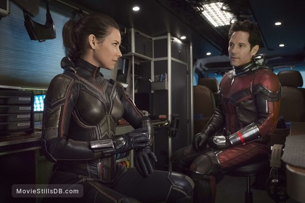 Ant-Man and the Wasp - Publicity still of Evangeline Lilly & Paul Rudd