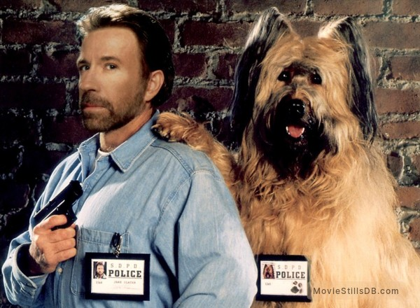 Top Dog - Promo shot of Chuck Norris