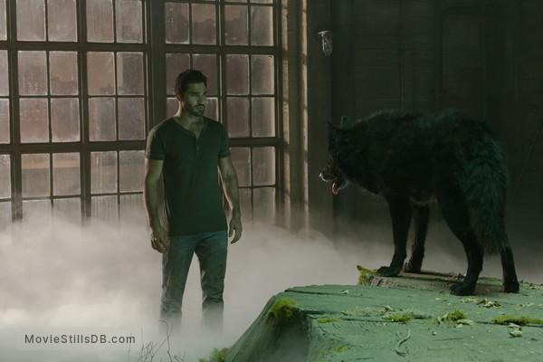 Teen Wolf - Publicity still of Tyler Hoechlin