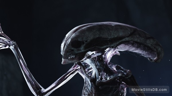 Alien: Covenant - Behind the scenes photo