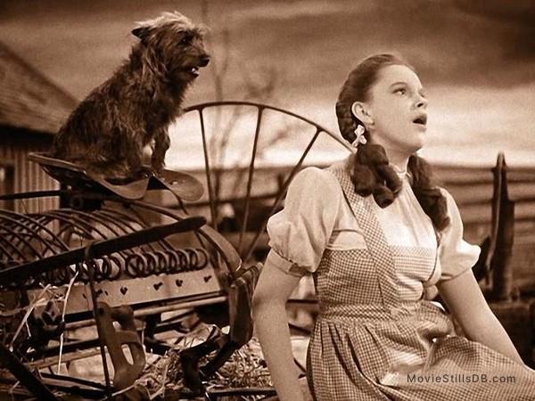 The Wizard of Oz - Publicity still of Judy Garland