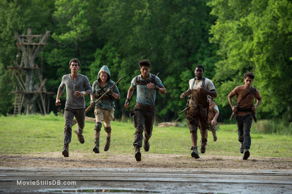 The Maze Runner - Publicity still of Dylan O'Brien, Ki Hong Lee, Alexander Flores, Dexter Darden & Joe Adler