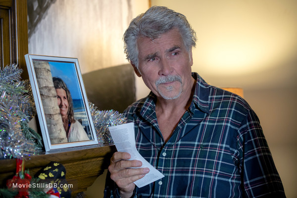 Ill Be Home For Christmas 2016.I Ll Be Home For Christmas Publicity Still Of James Brolin