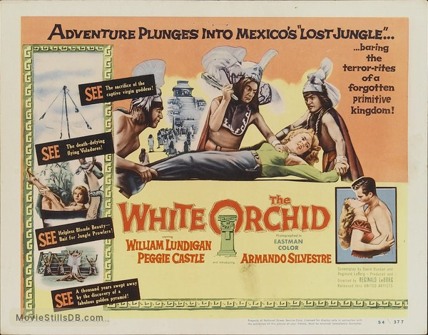 the white orchid lobby card