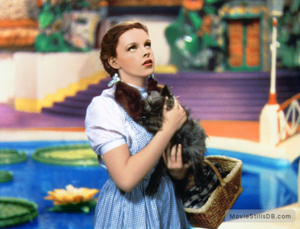 The Wizard of Oz - Publicity still of Judy Garland